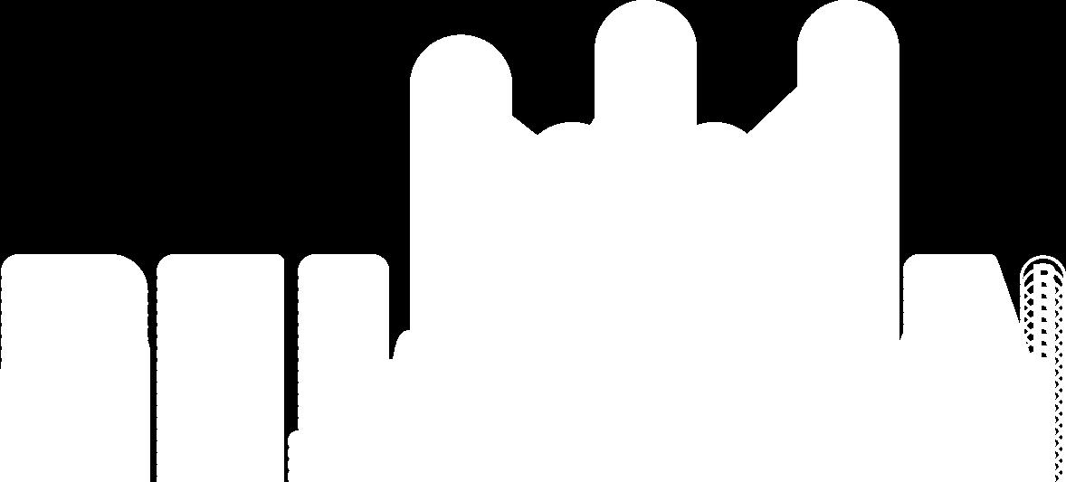 belzonalogo_en_w